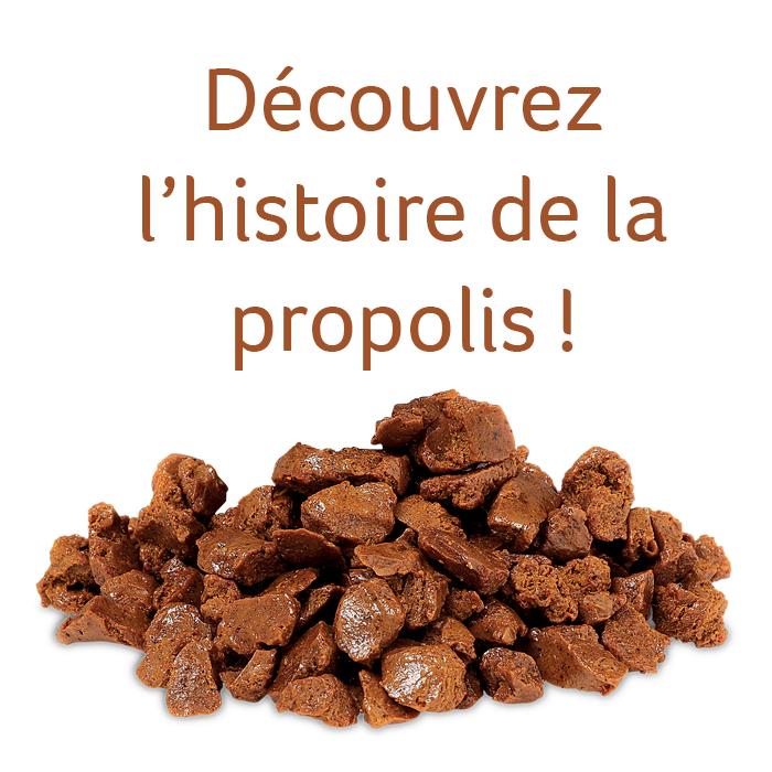 propolis - histoire
